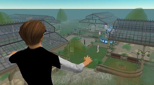Second Life #1